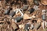 thumb_cluster-bombs-in-olive-grove